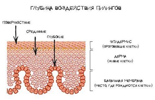 Виды пилингов по глубине воздействия