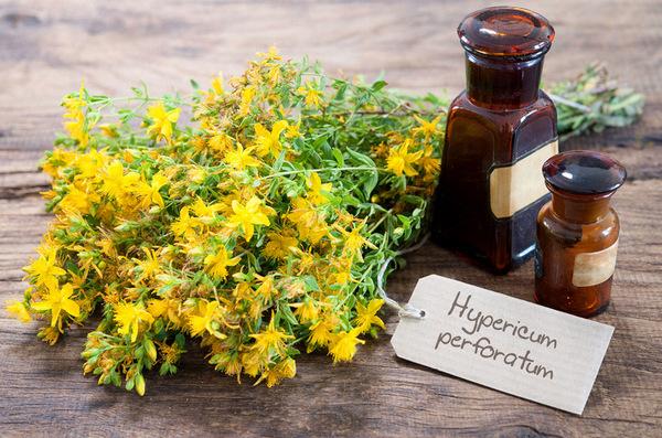 Резултат с изображение за жълт кантарион масло