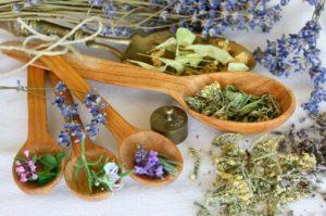 Какие именно травы лучше использовать для кожи лица: обзор самых эффективных, домашние рецепты
