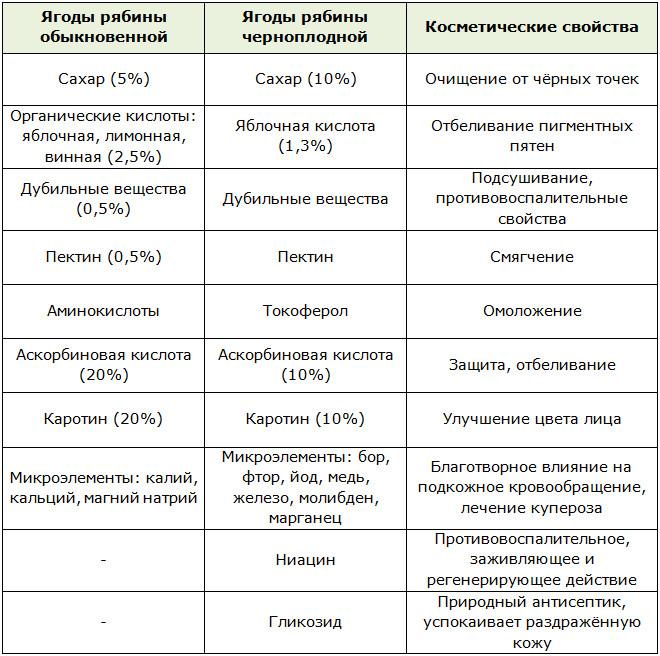 Полезные косметические свойства рябины обыкновенной и черноплодной